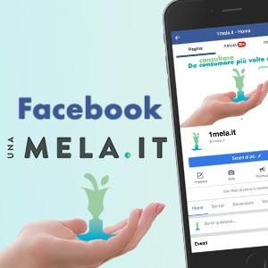 banner 1mela facebook