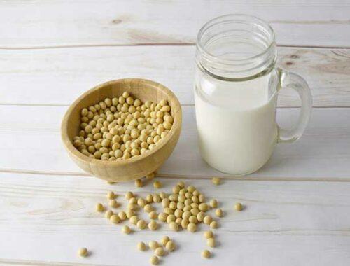 bevanda vegetale a base di soia